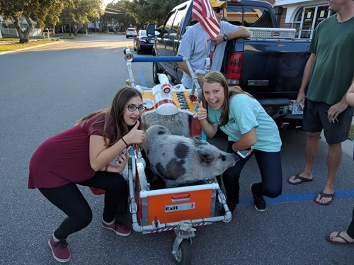 Anna, Laney, and the Pig